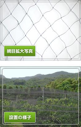 黒色強力防鳥網(中)5㎝目